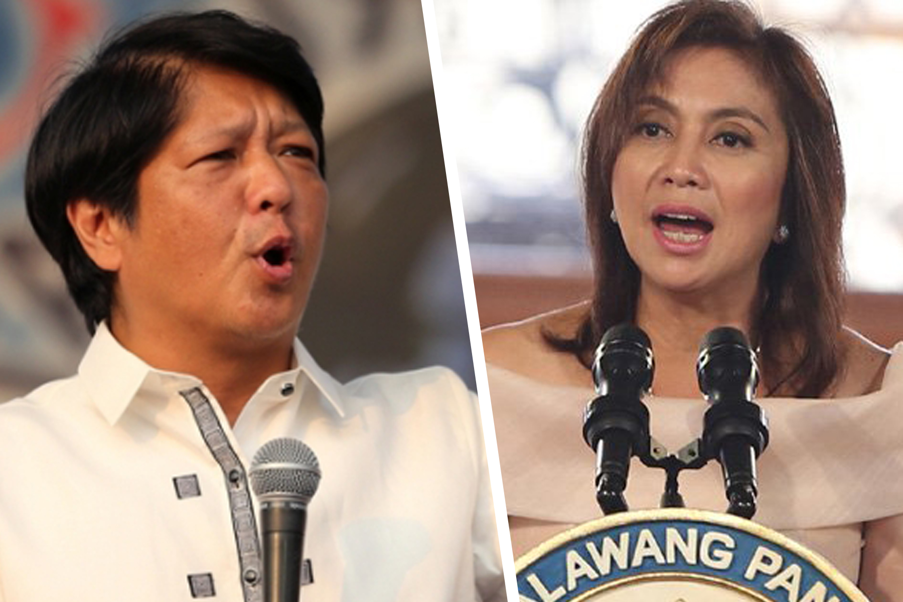 Tribunal to start 2016 VP race votes review