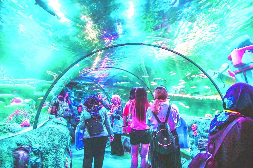 SEA LIFE Malaysia officially opens at LEGOLAND Malaysia Resort