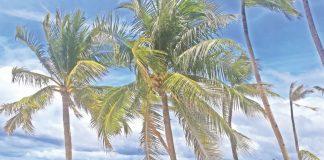 SERENE. Boracay is a scenic getaway, an idyllic paradise that boasts a 4-kilometer stretch White Sand Beach.