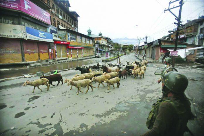 Indian paramilitary soldiers guard as a Kashmiri livestock seller crosses a street ahead of Eid al Adha during a security lock down in Srinagar, Indian controlled Kashmiri, Saturday, Aug. 10, 2019. AP