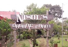 Nisol's is a small farm but has big ideas in it