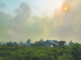 Fires belch smog across Southeast Asia annually, but this year's are the worst since 2015. AFP