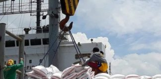 The private sector has urged the government to enforce safeguards on rice importation amid the continuing decrease in the price of unhusked rice or palay since the Rice Tariffication Law was implemented. PNA