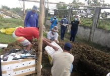 Personnel of the Iloilo Provincial Veterinary Office bury in Barangay Inaladan, Cabatuan, Iloilo boxes of imported canned pork confiscated at the Iloilo Airport. The items were from African swine fever-hit areas of Hong Kong and Singapore. African swine fever is a highly contagious viral disease that affects pigs, warthogs and boars. It is not considered a human health threat. However, humans can become carriers of the virus once tainted pork is ingested or if people get close to the infected meat. PHOTOS BY DR. DAREL TABUADA