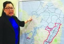 Bureau of Fisheries and Aquatic Resources Region 6 Director Remia Aparri points to areas that are covered by the closed season. Aparri enjoined the public for their support to the campaign that would last until Feb. 15, 2020. PNA