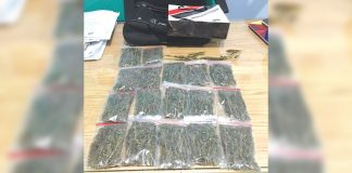 Security guard Jeyron Magbanua turns over sachets of suspected marijuana to Police station 1 of Bacolod City on Jan. 21. POLICE STATION 1/ BPO