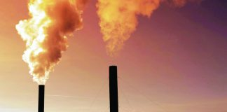 Globally, air pollution accounts for 29 percent of all deaths and disease from lung cancer, 17 percent from acute lower respiratory infection, and a quarter from stroke and heart disease, according to the World Health Organization. NRDC